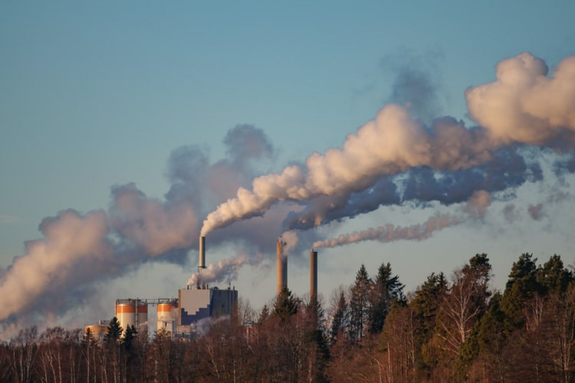 how-does-air-pollution-affect-your-health