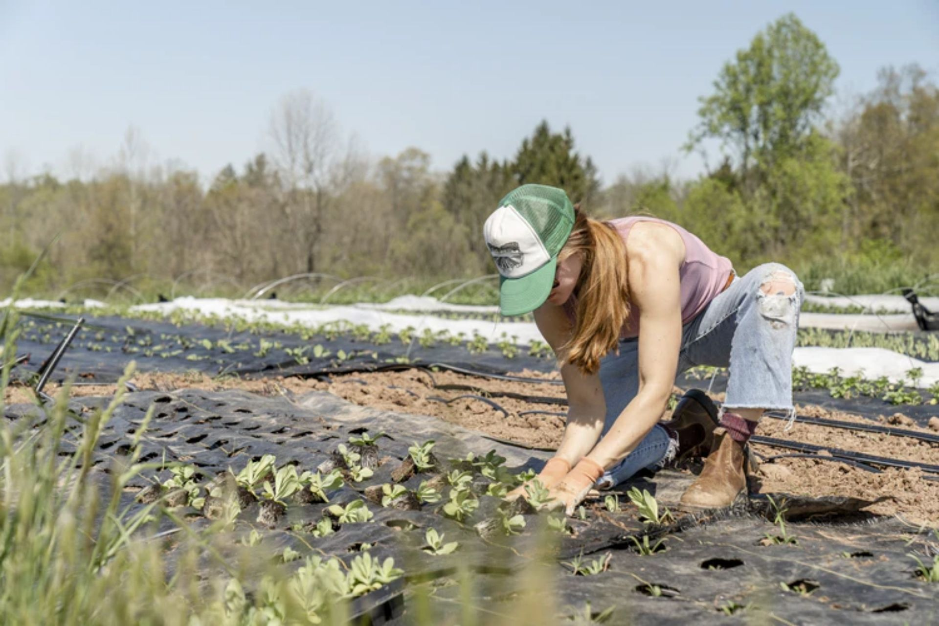 5 women in agribusiness